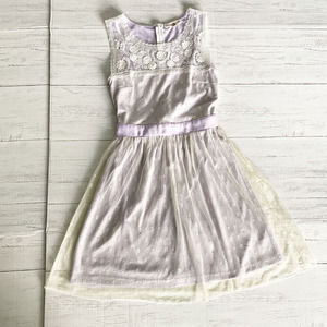 Alter'd State Lilac Lace Lined Dress